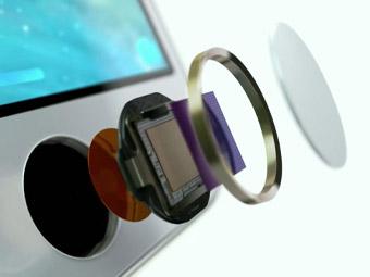 苹果手机Apple ID被停用的解除方法